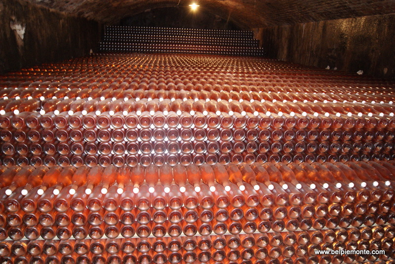 An incredible number of bottles!
