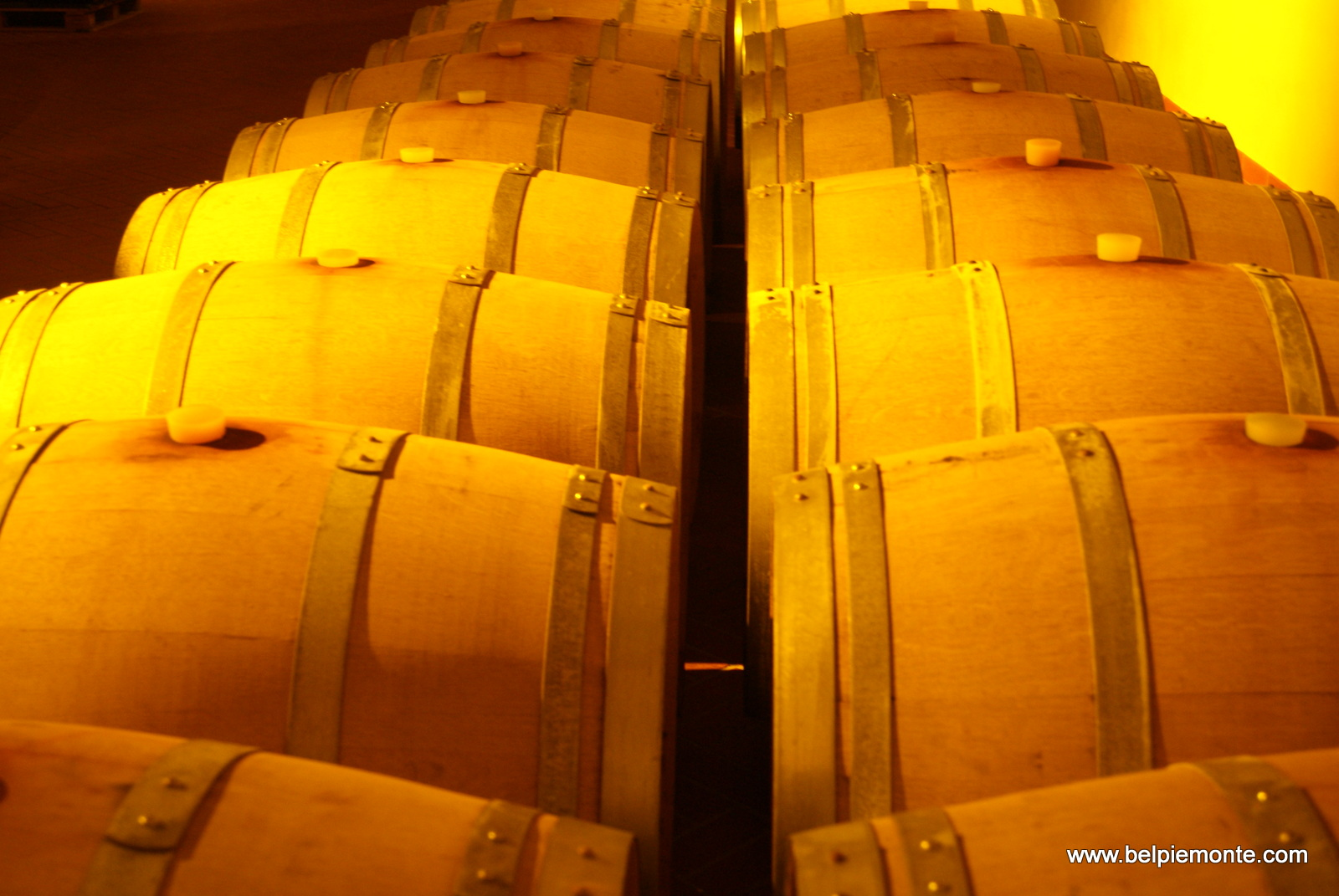 barriques where part of Barolo wine matures