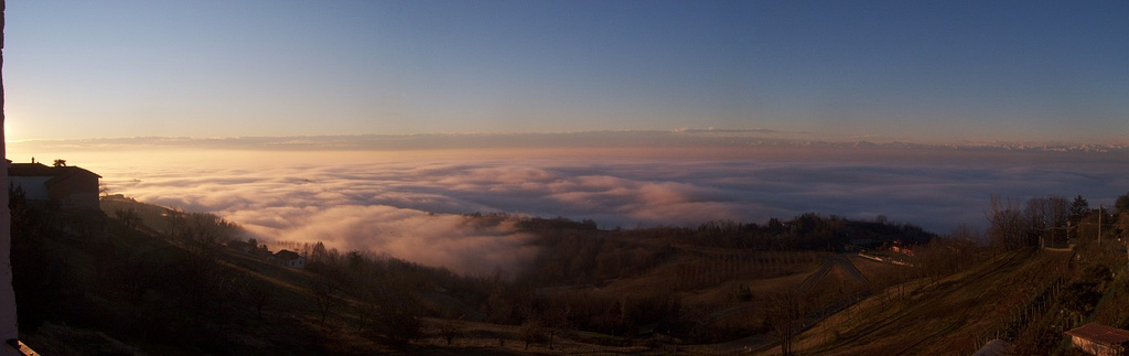 Misty morning in Piemonte