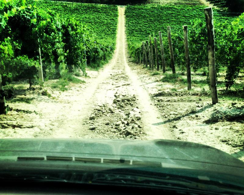 Through the vineyards of Giovanni Rosso on a 4-wheeler