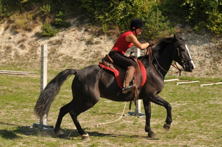 Horseback riding in San Bovo. Photo from www.sanbovo.it