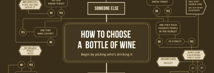 How to Choose a Bottle of Wine - Infographic