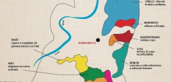 The crus of Barbaresco, explained in style