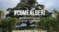 #COMEALBERI: Instameet & photo contest