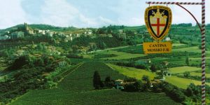 Mossio, il Dolcetto è il nostro Re dei vini