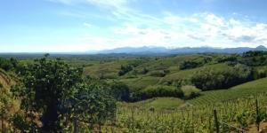 Alto Piemonte: esplorate la differenza fra vigne e sapori