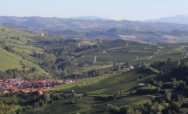 In the Heart of the Langhe