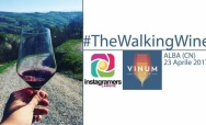 #TheWalkingWine Instameet: discover the city of Alba and its best wines